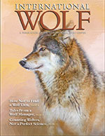International Wolf Fall 2013 Magazine