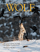 International Wolf Magazine Winter 2016