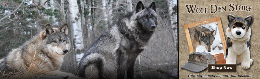 Wolf Logs