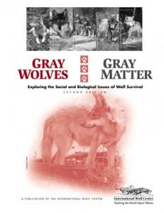 Gray Wolves, Gray Matter Cover
