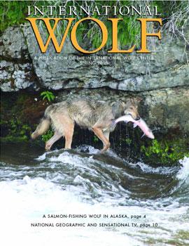 International Wolf Magazine - Spring 2008