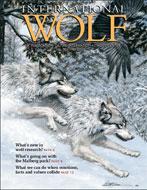 International Wolf Magazine Spring 2013
