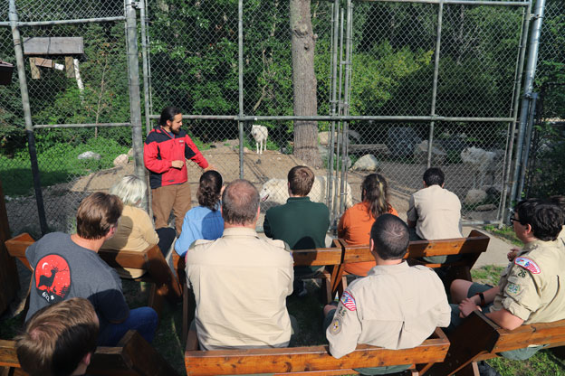 International Wolf Center On-Site Programs
