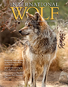 International Wolf Fall 2018