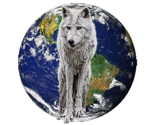 Wolves of the World