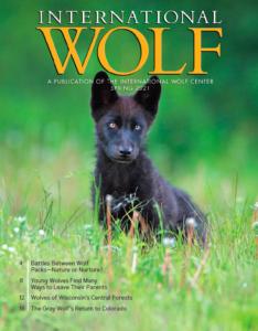 International Wolf Spring 2021
